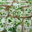 htdr-gastronomsko_druzenje_15